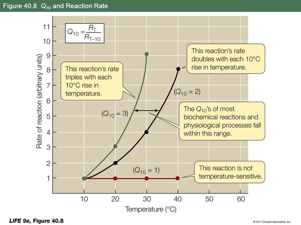 Figure 40.8 Q10 and Reaction Rate