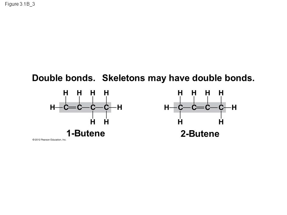 Skeletons may have double bonds.