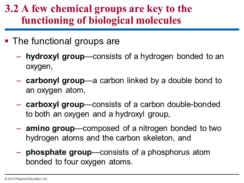 3.2 A few chemical groups are key to the functioning of biological molecules