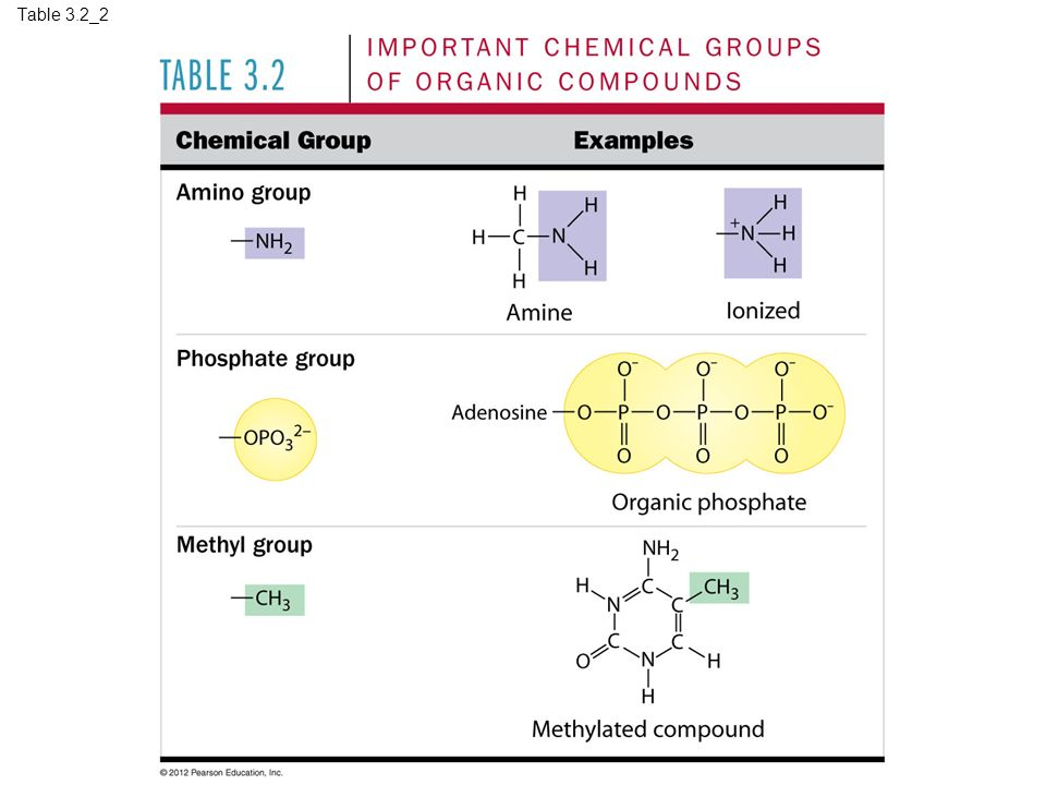 Table 3.2_2 Table 3.2_2 Important chemical groups of organic compounds (part 2) 17
