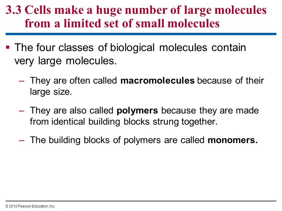 3.3 Cells make a huge number of large molecules from a limited set of small molecules