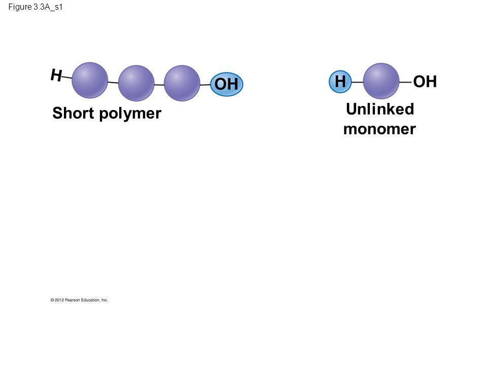 Unlinked monomer Short polymer Figure 3.3A_s1