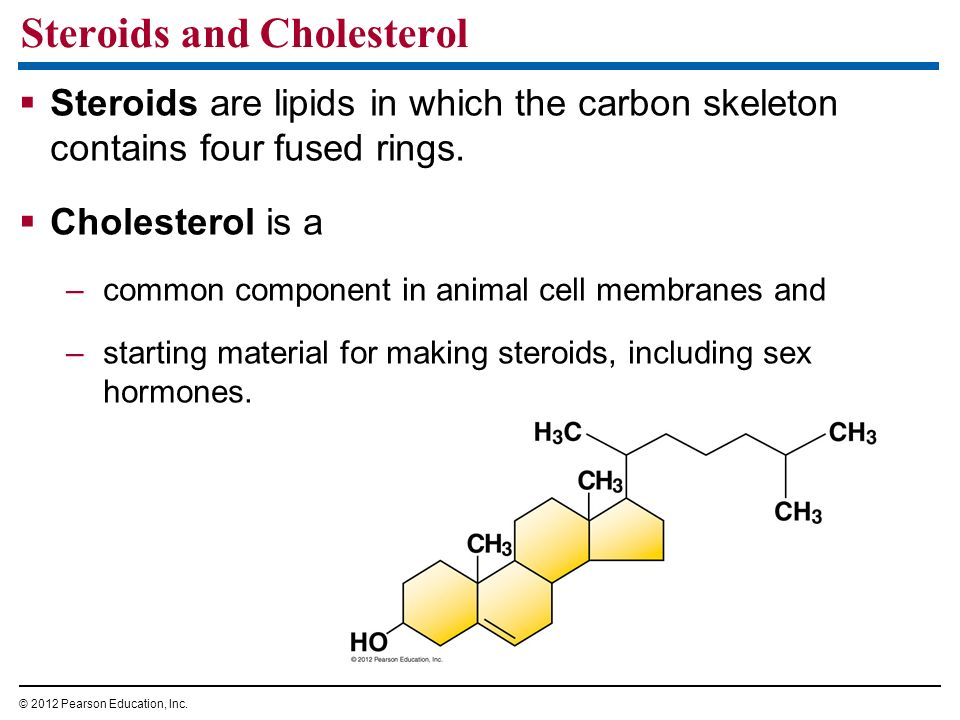 Steroids and Cholesterol