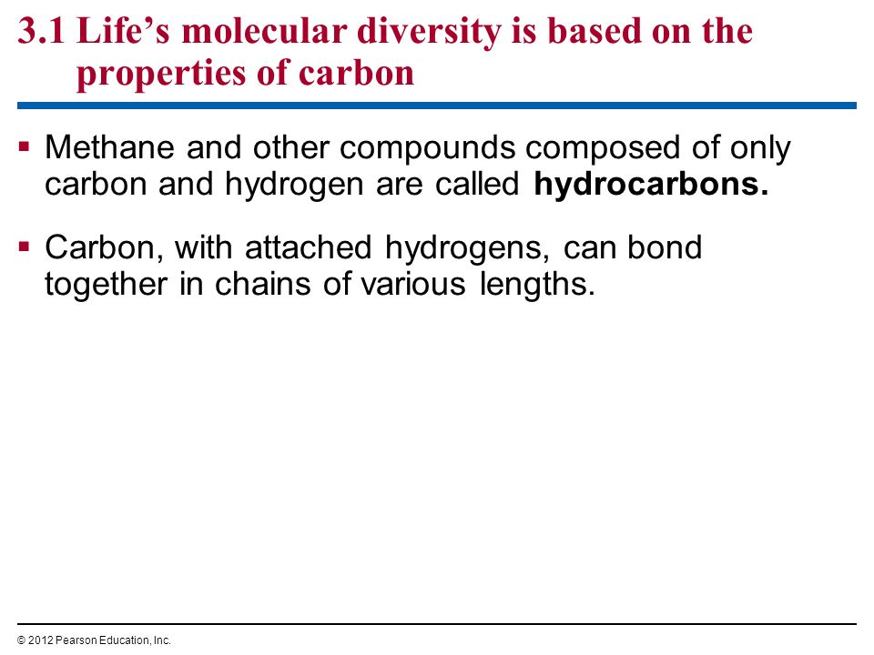 3.1 Life's molecular diversity is based on the properties of carbon