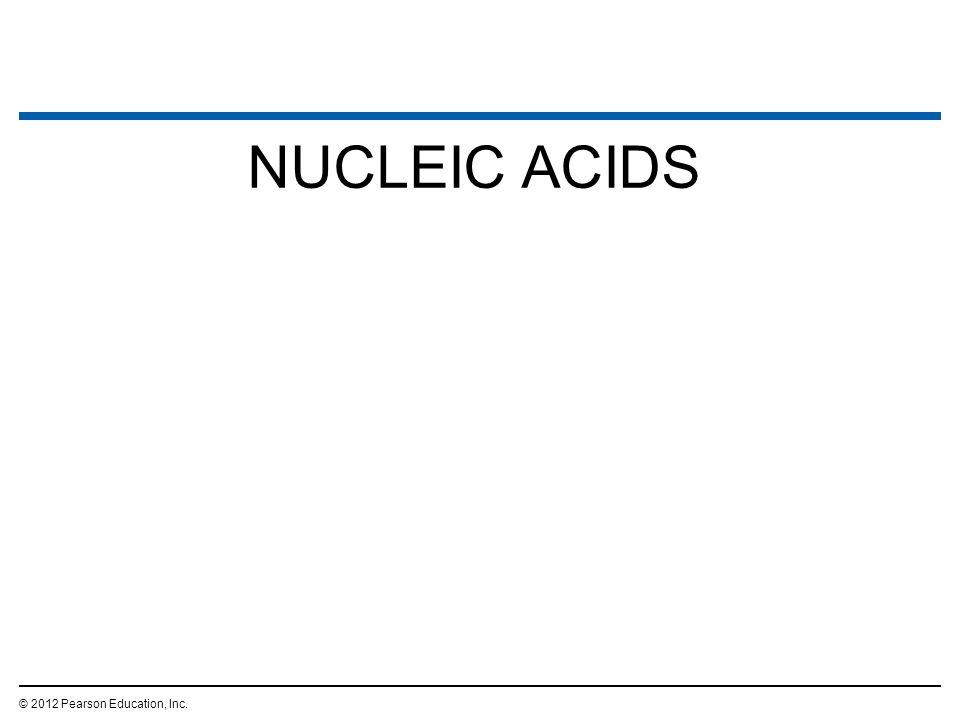 NUCLEIC ACIDS © 2012 Pearson Education, Inc. 56