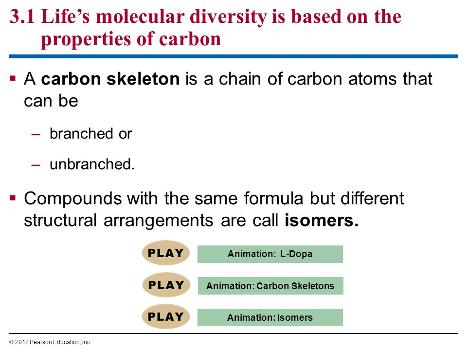 Animation: Carbon Skeletons