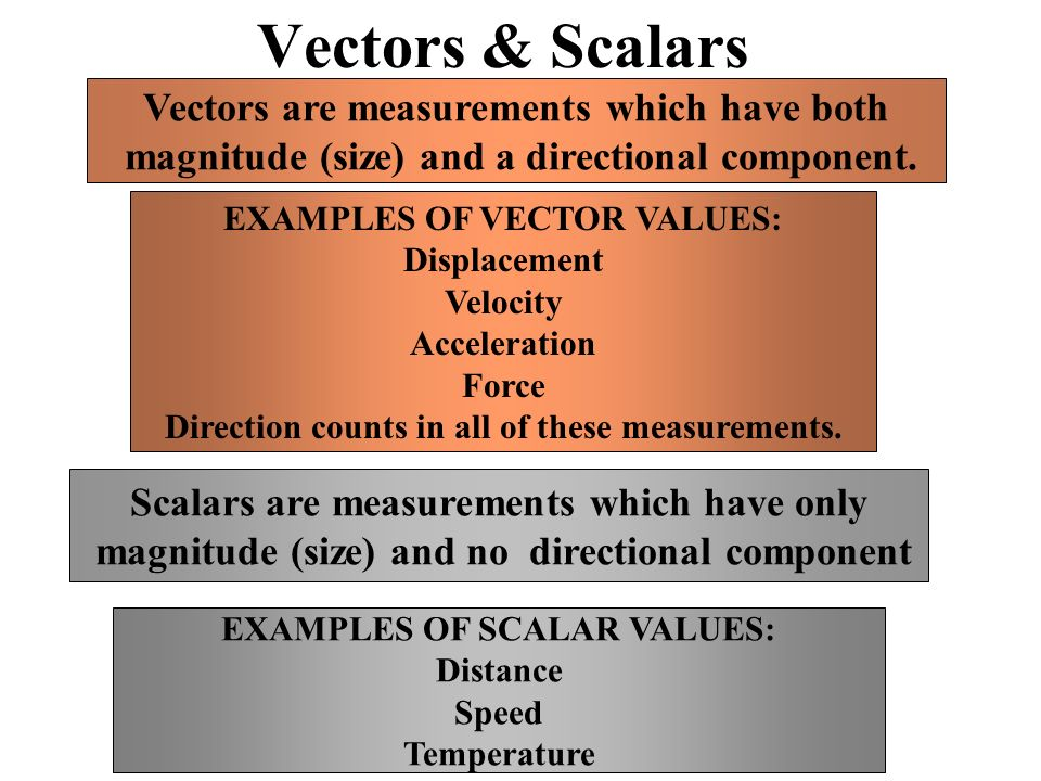 Vectors & Scalars Vectors are measurements which have both