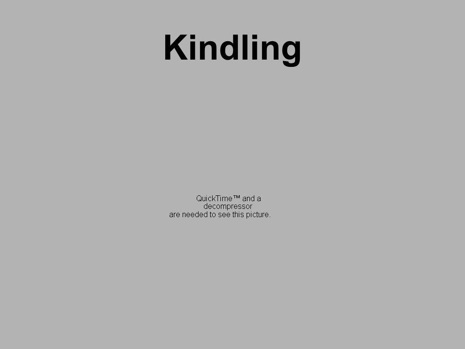 KindlingBecker HC.Kindling in Alcohol Withdrawal.