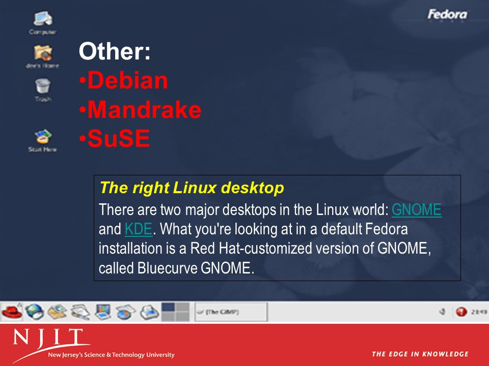 Other: Debian Mandrake SuSE The right Linux desktop