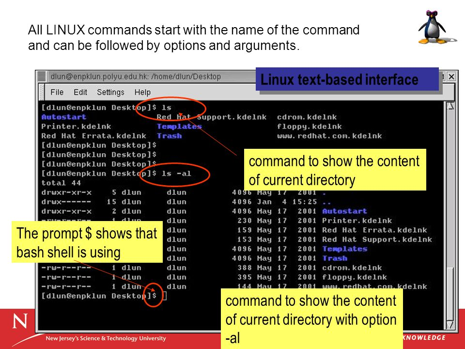Linux text-based interface