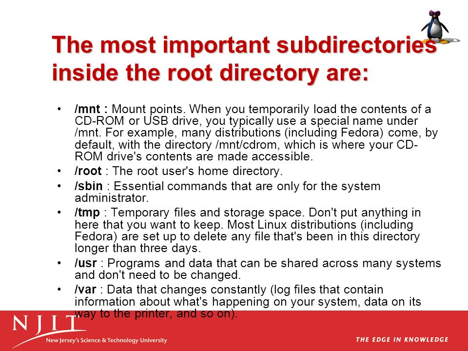 The most important subdirectories inside the root directory are: