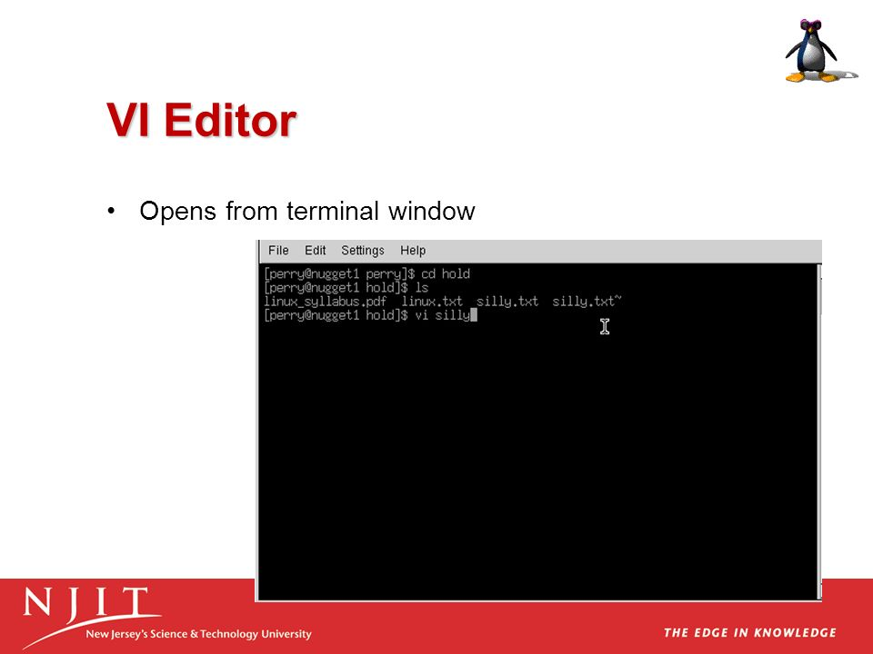 VI Editor Opens from terminal window