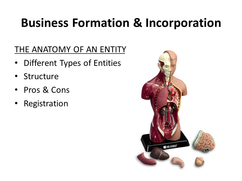 Business Formation & Incorporation