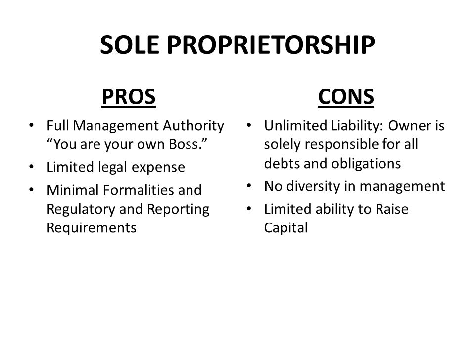 SOLE PROPRIETORSHIP PROS CONS