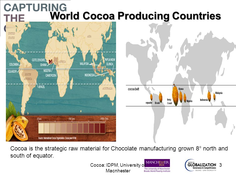 World Cocoa Producing Countries
