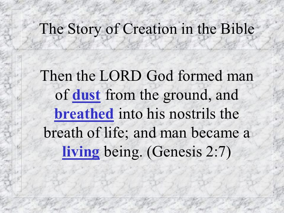 The Story of Creation in the Bible