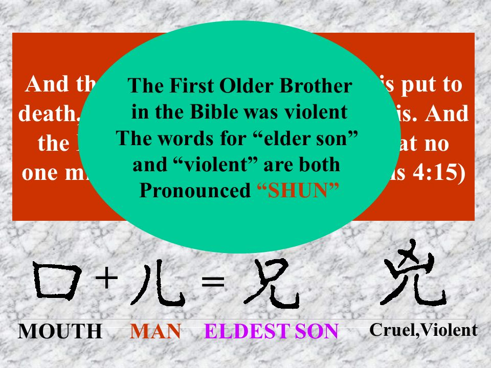 The First Older Brother