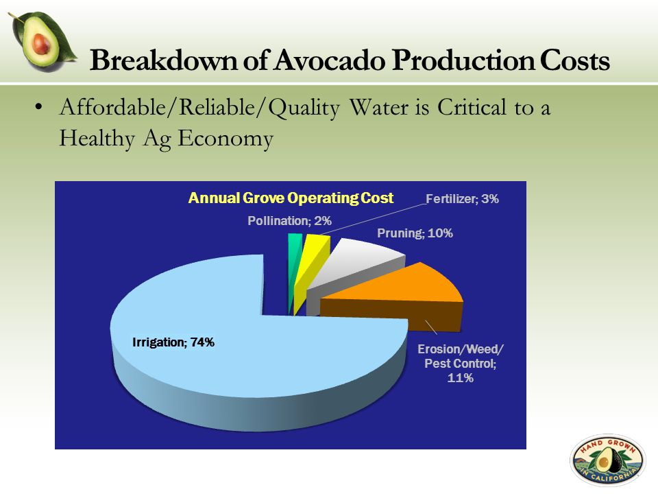 Breakdown of Avocado Production Costs