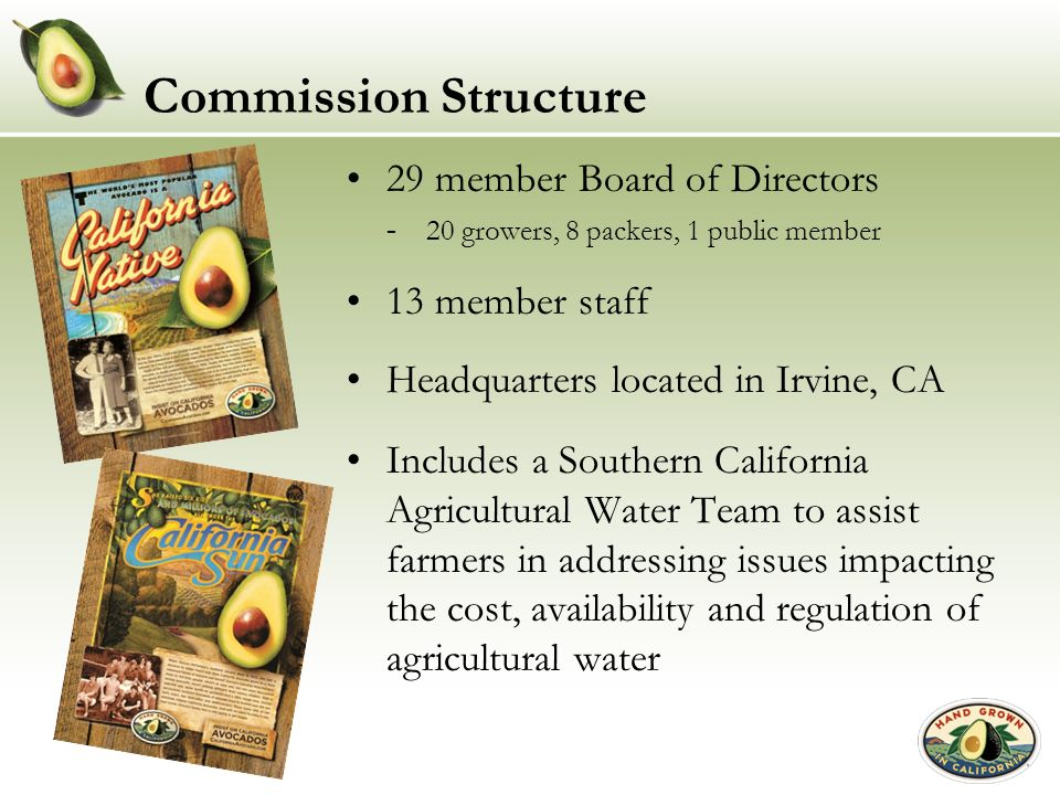 Commission Structure 29 member Board of Directors 13 member staff