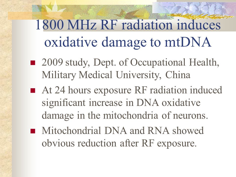 1800 MHz RF radiation induces oxidative damage to mtDNA