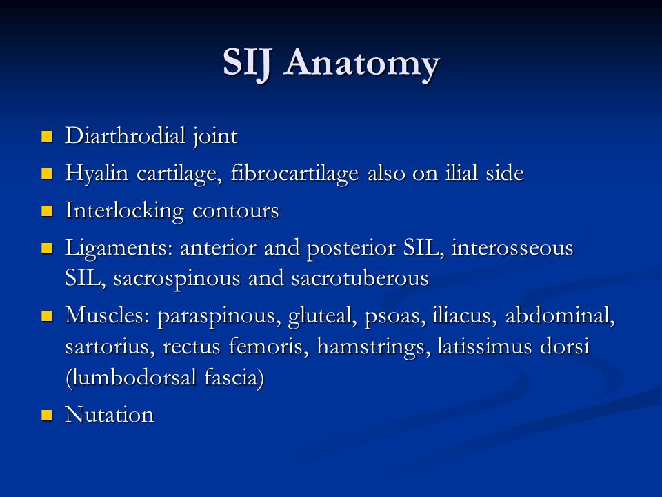 SIJ Anatomy Diarthrodial joint