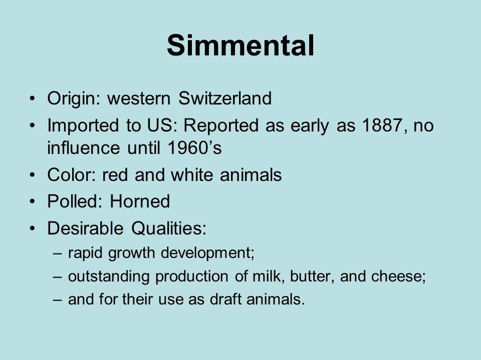 Simmental Origin: western Switzerland