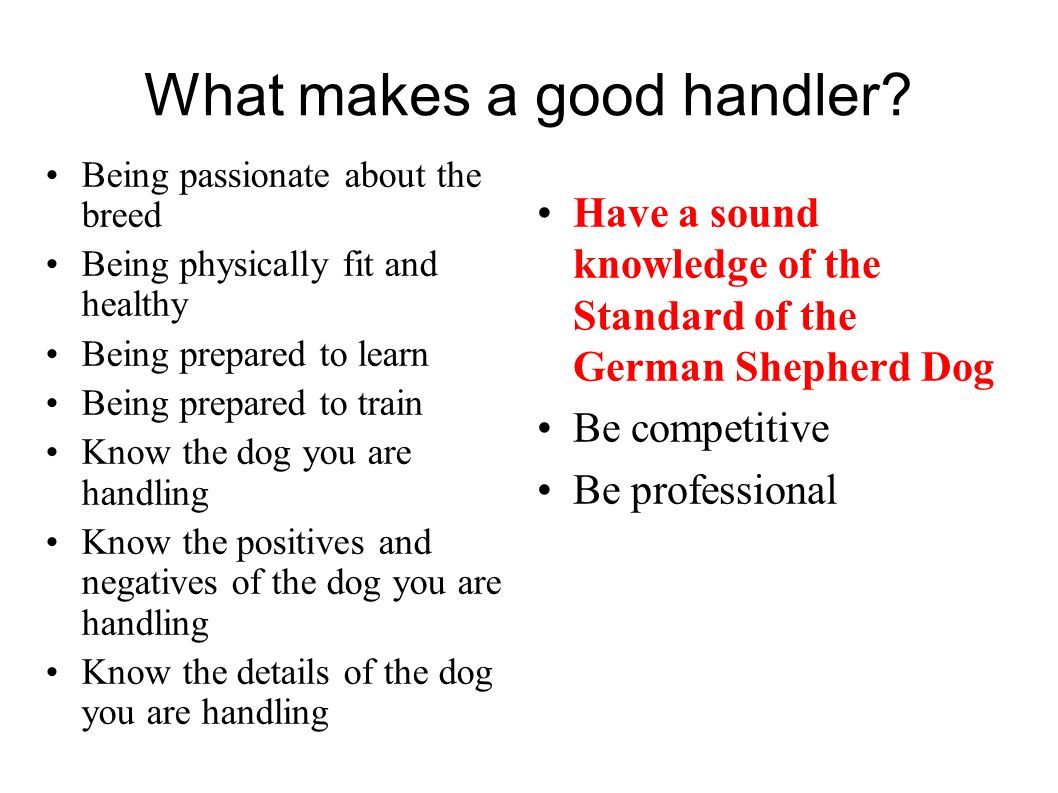 What makes a good handler