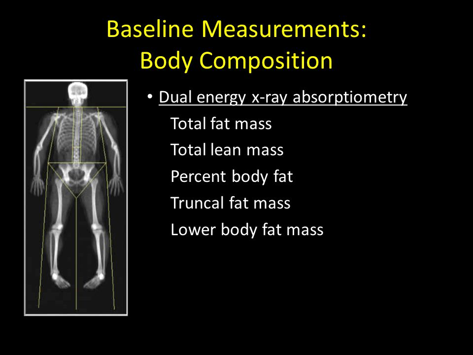 Baseline Measurements: Body Composition