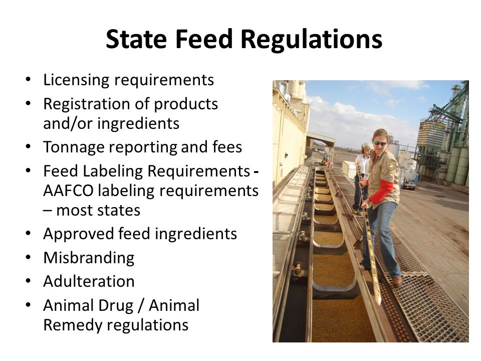 State Feed Regulations