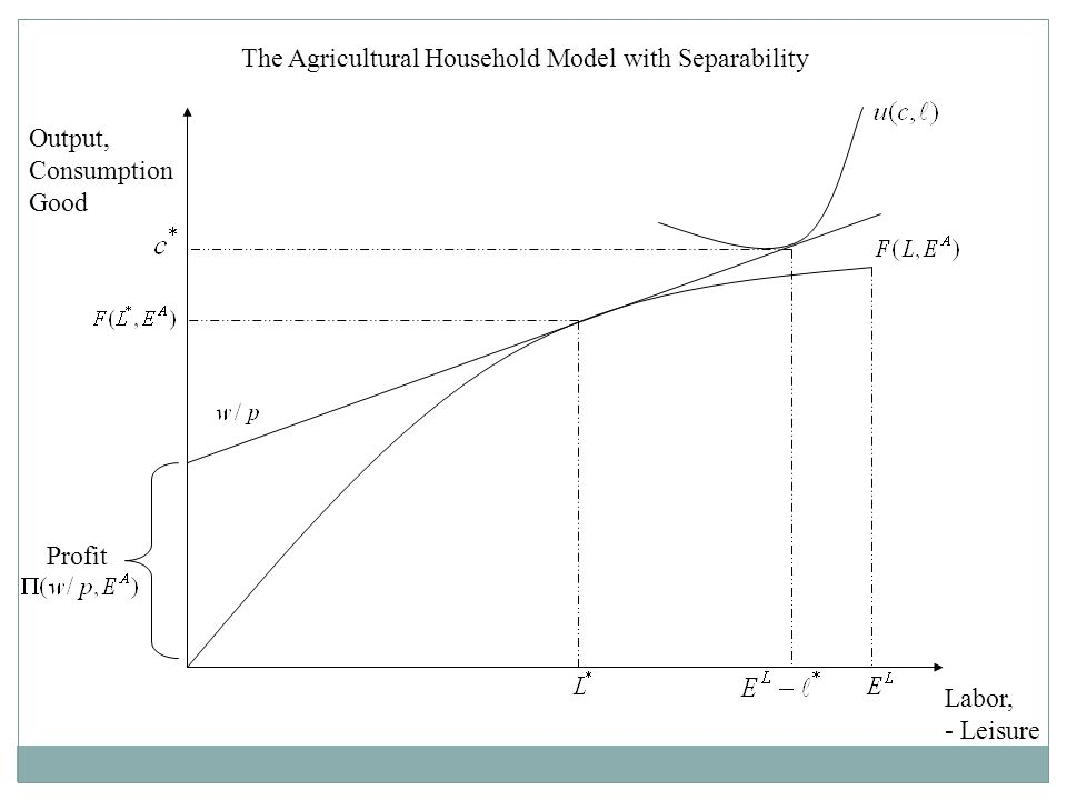 The Agricultural Household Model with Separability