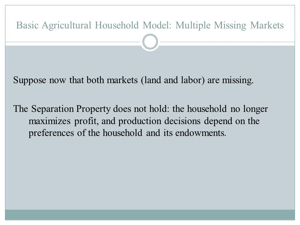 Basic Agricultural Household Model: Multiple Missing Markets