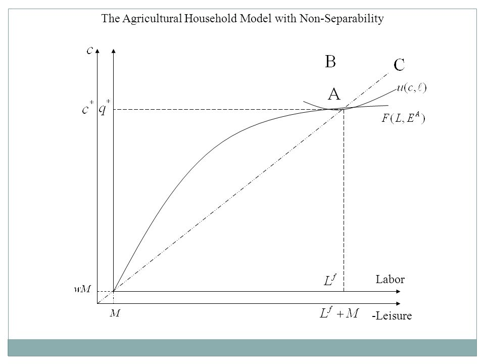 The Agricultural Household Model with Non-Separability