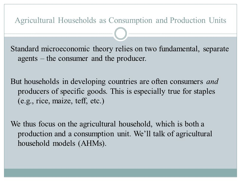 Agricultural Households as Consumption and Production Units