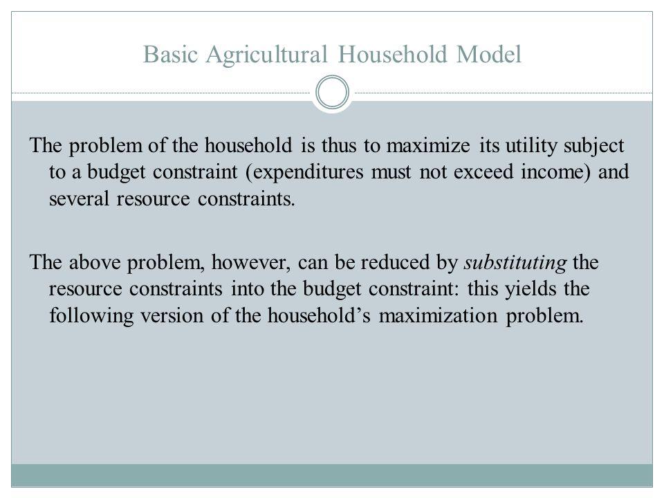 Basic Agricultural Household Model