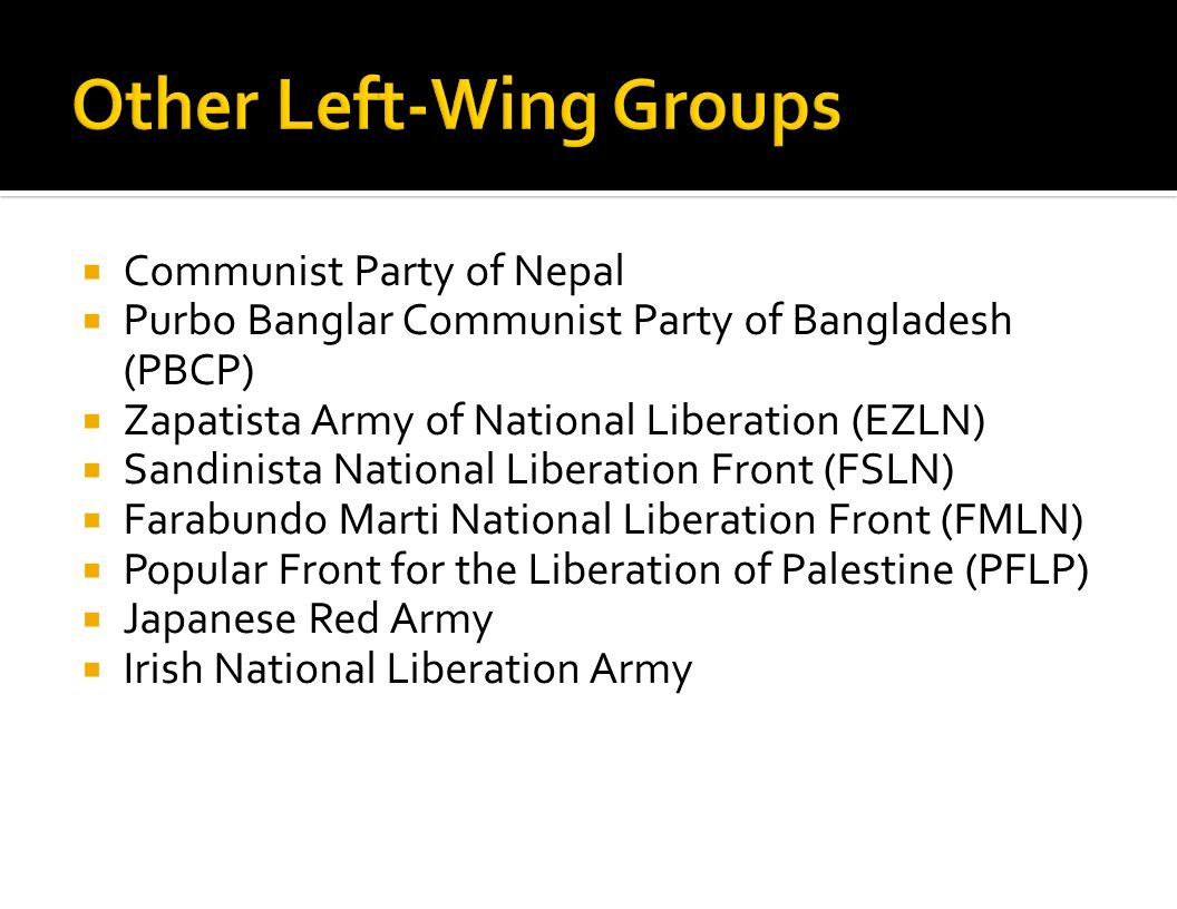 Other Left-Wing Groups
