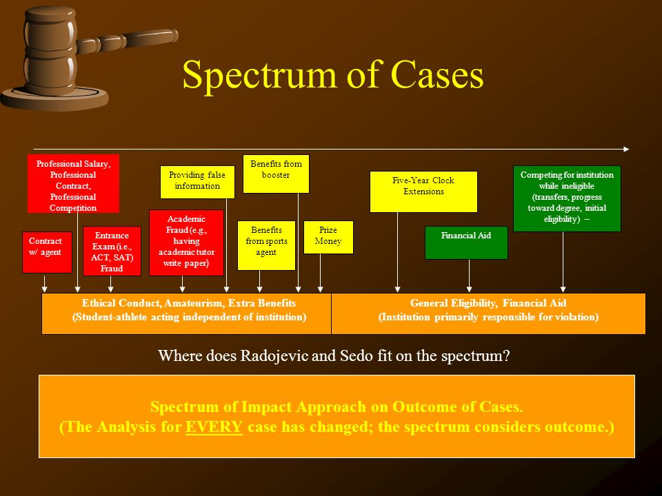 Spectrum of Cases Where does Radojevic and Sedo fit on the spectrum