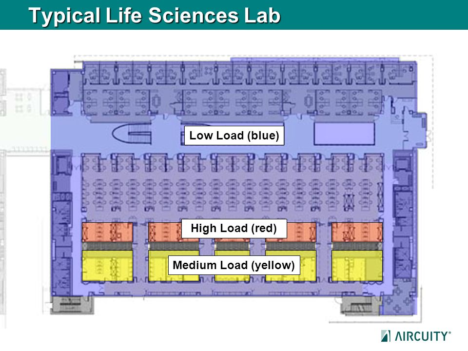 Typical Life Sciences Lab