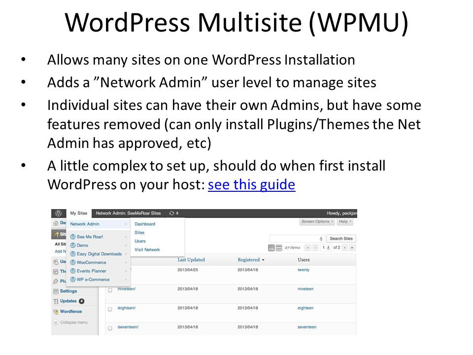 WordPress Multisite (WPMU)