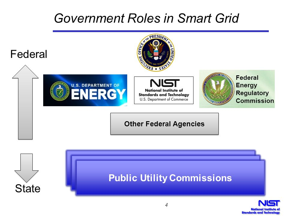 Government Roles in Smart Grid