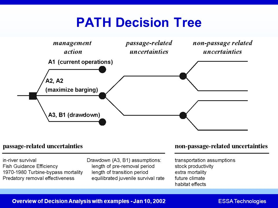 PATH Decision Tree