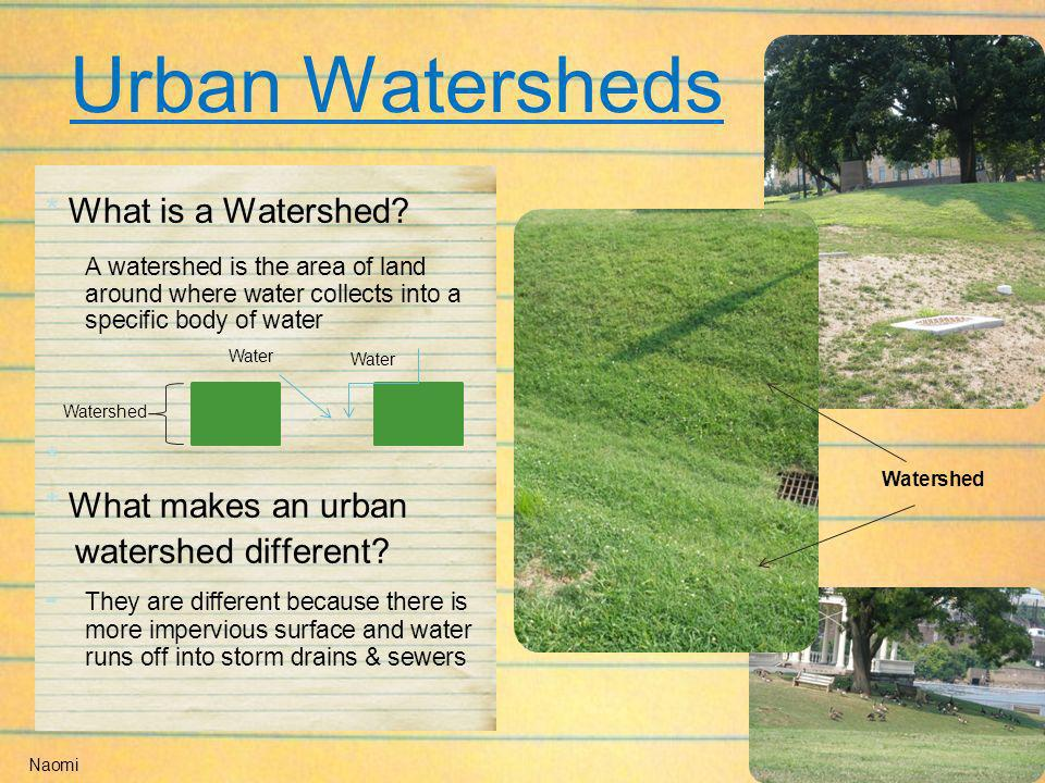 Urban Watersheds * What is a Watershed * * What makes an urban