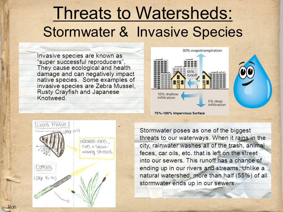 Threats to Watersheds: Stormwater & Invasive Species