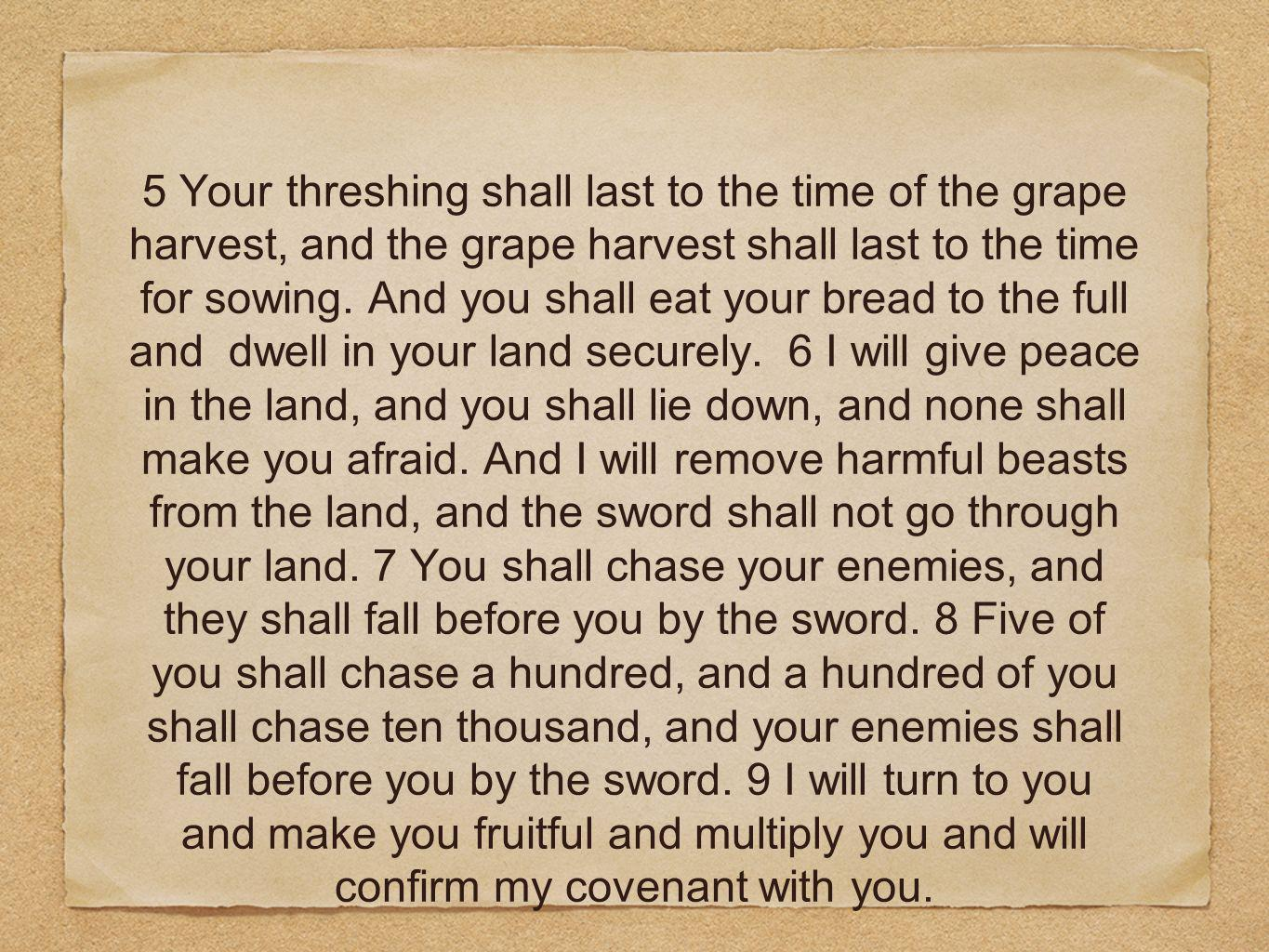 5 Your threshing shall last to the time of the grape harvest, and the grape harvest shall last to the time for sowing.