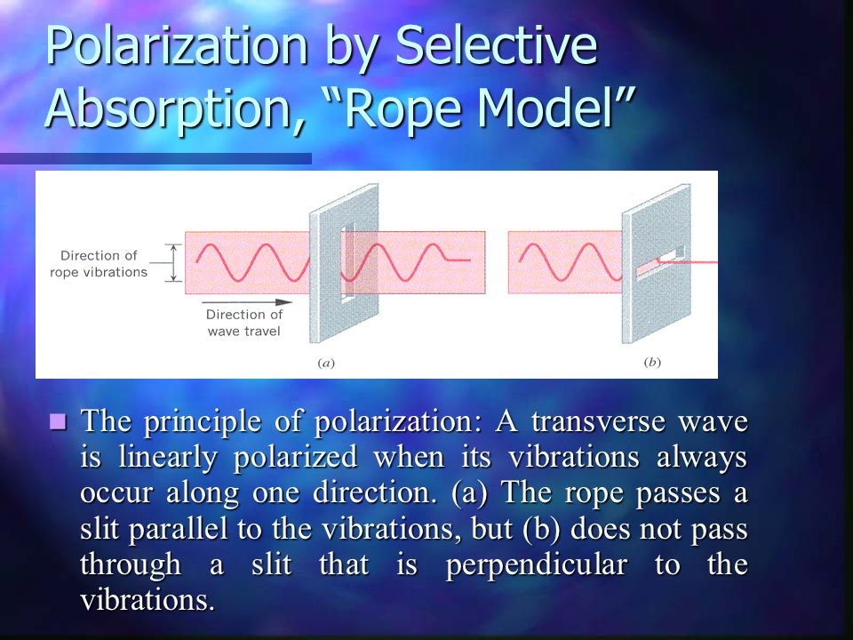 Polarization by Selective Absorption, Rope Model
