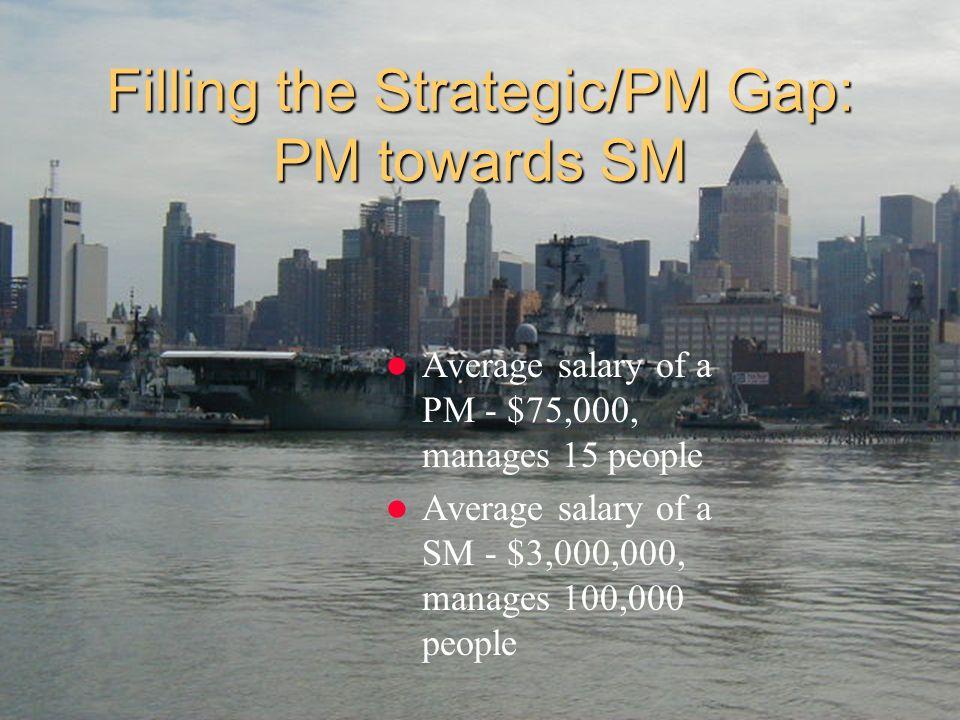 Filling the Strategic/PM Gap: PM towards SM