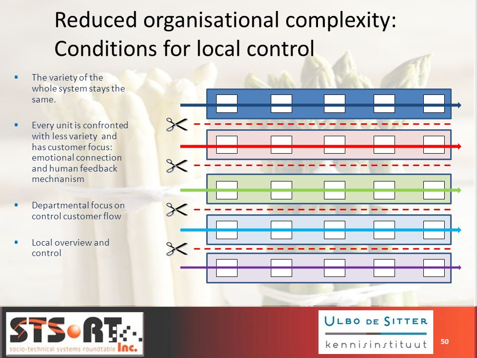 Reduced organisational complexity: Conditions for local control