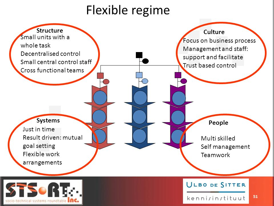 Flexible regime Structure Culture Small units with a whole task