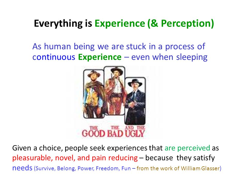 Everything is Experience (& Perception)