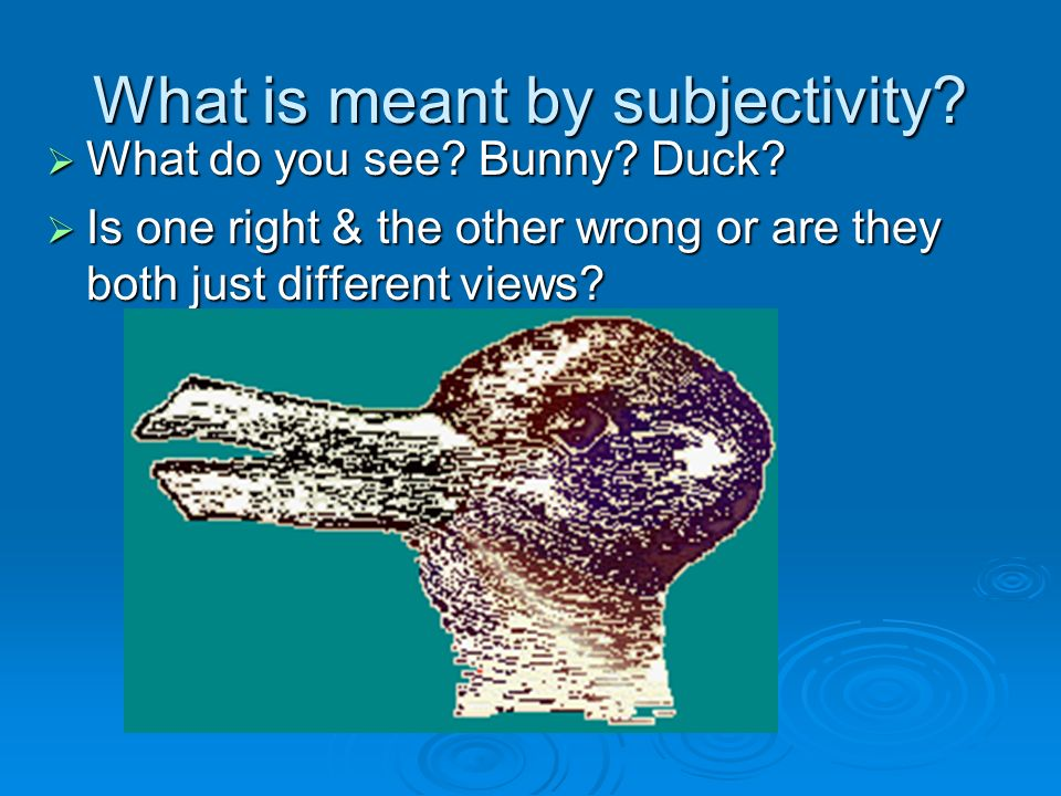 What is meant by subjectivity