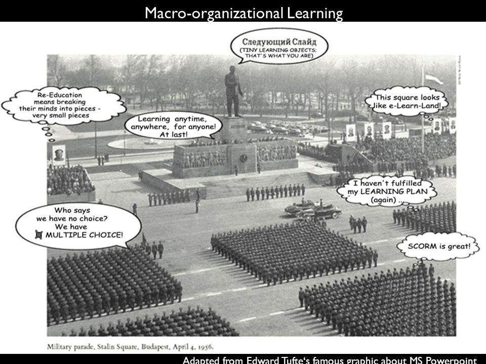 Macro-organizational Learning